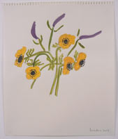 Yellow Anemone/Purple Veronica II Series I 2003 Watercolor, pencil on paper